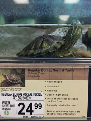 Prank of the Day: Guy Adds His Own Hilarious Descriptions of Animals at Local Pet Shop