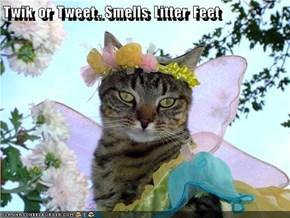 Twik  or  Tweet.. Smells  Litter  Feet