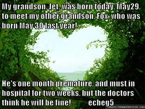 My grandson, Jet, was born today, May29, to meet my other grandson, Fox, who was born May 30 last year!  He's one month premature, and must in hospital for two weeks, but the doctors think he will be fine!            echeg5
