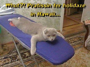 Whut?! Pratissin fer holidaze    in Hawaii...