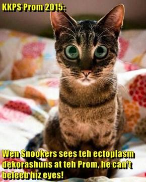 KKPS Prom 2015:  Wen Snookers sees teh ectoplasm dekorashuns at teh Prom, he can't beleeb hiz eyes!