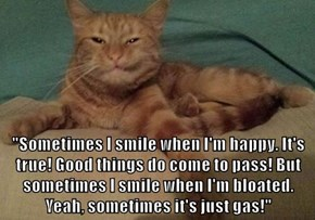 """""""Sometimes I smile when I'm happy. It's true! Good things do come to pass! But sometimes I smile when I'm bloated. Yeah, sometimes it's just gas!"""""""