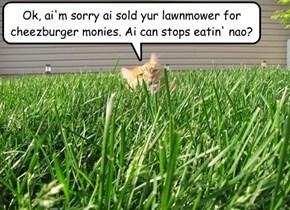 Ai fawt teh lawn... an' teh lawn won!