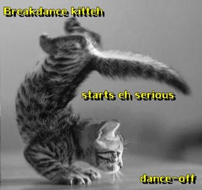Breakdance kitteh                starts eh serious                                                 dance-off