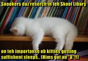 "Snookers duz reserch in teh Skool Libary  on teh importanse ob kitties getting suffishent sleeps.. (Hims got an ""A""!!)"