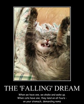 THE 'FALLING' DREAM