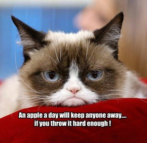 Free medical advice from Grumpy Cat
