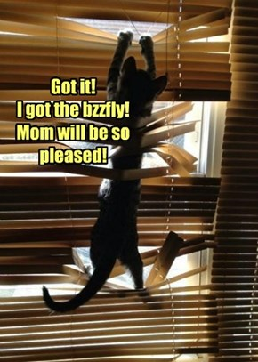 Got it! I got the bzzfly! Mom will be so pleased!