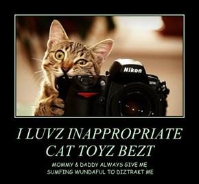 I LUVZ INAPPROPRIATE CAT TOYZ BEZT