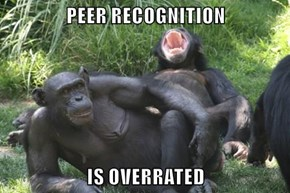 PEER RECOGNITION  IS OVERRATED