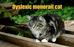 Dyslexic monorail cat.