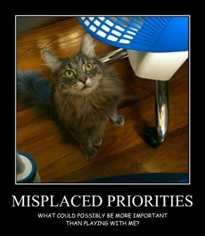 MISPLACED PRIORITIES