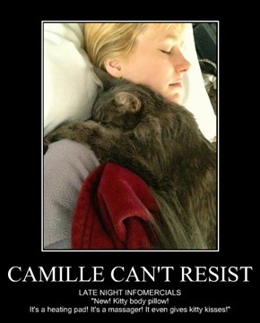 CAMILLE CAN'T RESIST