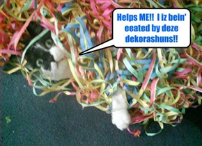 While dancin' at teh Prom, somhow Snookers got all entangled in a bunch ob teh dekorashuns!