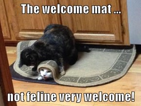 The welcome mat ...  not feline very welcome!