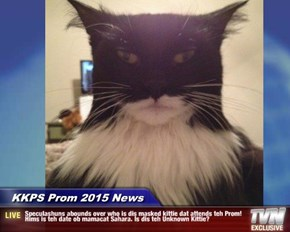 KKPS Prom 2015 News - Speculashuns abounds over who is dis masked kittie dat attends teh Prom! Hims is teh date ob mamacat Sahara. Is dis teh Unknown Kittie?