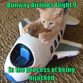 Bunway Airlines Flight 9  in the process of being hijacked