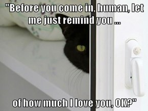 """Before you come in, human, let me just remind you ...  of how much I love you, OK?"""