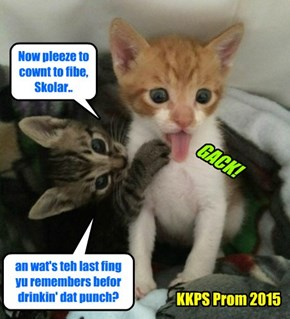 Wiff teh punch being spiked wiff meowie wowie, Dr. Tinycat wer called in to eggsamin sll teh Skolars to make shur dey wer okay! An' teh parents wer bery upset by der sweet childrens being drugged!!