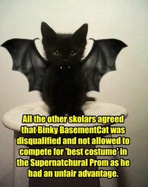 All the other skolars agreed that Binky BasementCat was disqualified and not allowed to compete for 'best costume' in the Supernatchural Prom as he had an unfair advantage.