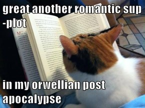 great another romantic sup-plot  in my orwellian post apocalypse