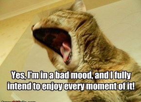 Yes, I'm in a bad mood, and I fully intend to enjoy every moment of it!