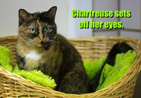 Chartreuse sets off her eyes.