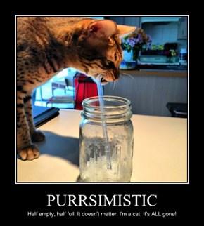 PURRSIMISTIC