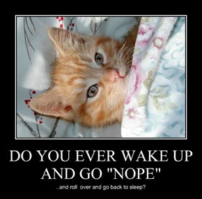 """DO YOU EVER WAKE UP AND GO """"NOPE"""""""