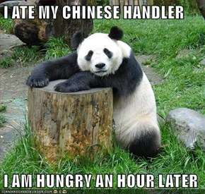 I ATE MY CHINESE HANDLER  I AM HUNGRY AN HOUR LATER