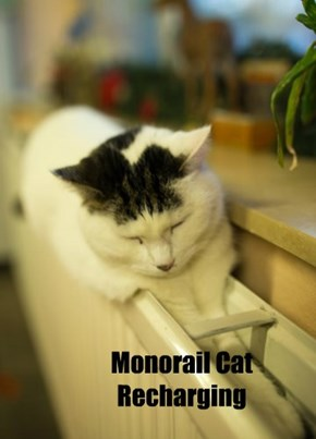 Monorail Cat Recharging