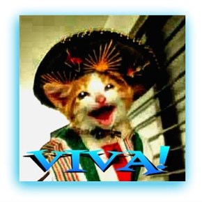 "happy Cinco De ""Meow"""