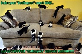 "Order your ""CatMagnet"" couch NOW...  and get TWO FREE ""CatMagnet"" pillows!! Call NOW!!!"