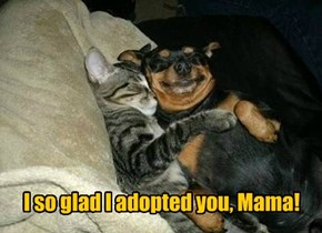 Happy Mother's Day to Adopted Moms, Too