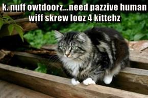 k. nuff owtdoorz...need pazzive human wiff skrew looz 4 kittehz