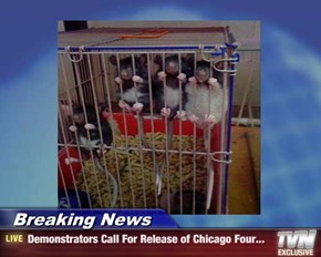 Breaking News - Demonstrators Call For Release of Chicago Four...