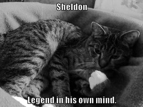 Sheldon   Legend in his own mind.