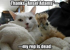 "Thanks ""Ansel Adams""---"