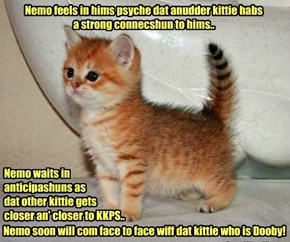 When new Skolar Nemo wakes up in teh morning, hims senses dat der iz a kittie somwher dat is reaching out to hims! Eben though Nemo does not know dat kittie, yet der is a definite connecshuns!