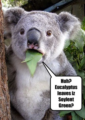 Huh? Eucalyptus leaves iz Soylent Green?