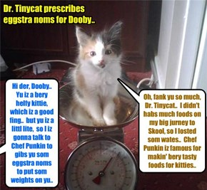 When Dooby first arribed at KKPS, Dr. Tinycat fownd dat Dooby wer in good helf but hims weighed a littl less den he should becaws ob hims long jurney to get to Kuppykakes Skool..