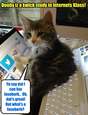 New Skolar Dooby bery much enjoys hiz klass in lerning all abowt teh internets an' computers.. An' Dooby kwickly becoms kwite teh eggspert in Soshal Medias wiff a large following on Fasebook!