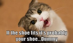 If the shoe fits it's probably your shoe...Dummy