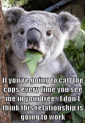If you're going to call the cops every time you see me in your tree...I don't think this relationship is going to work