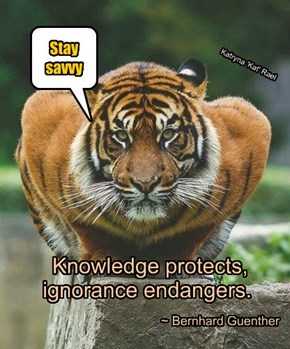 Knowledge protects,     ignorance endangers.