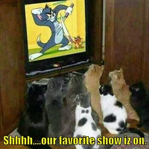 Shhhh,...our favorite show iz on.
