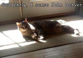 Suddently, I sense John Denver