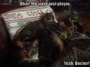 Ohai! We were just playin.  Yeah, Docter!