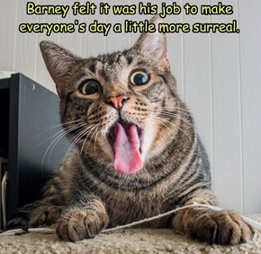 Barney deserves a raise.