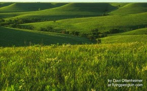 The Flint Hills of Kansas, oblique angle